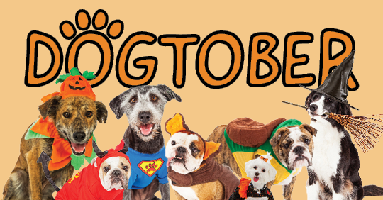 "Image shows various dogs in Halloween costumes with text behind that reads ""Dogtober"""